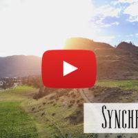 Synchromesh Winery, Okangan Vallery