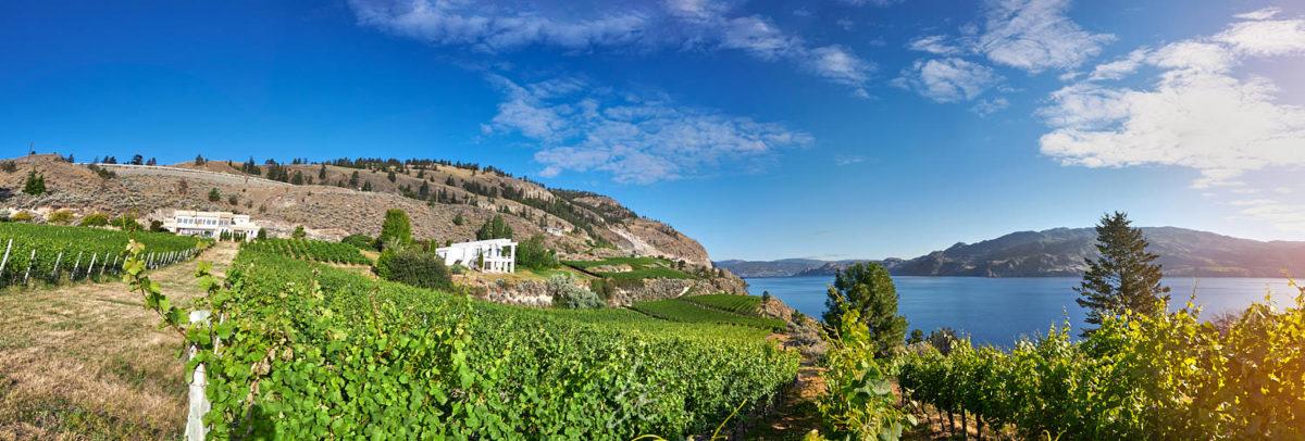 Kelowna Photographer captures stunning OAK winery