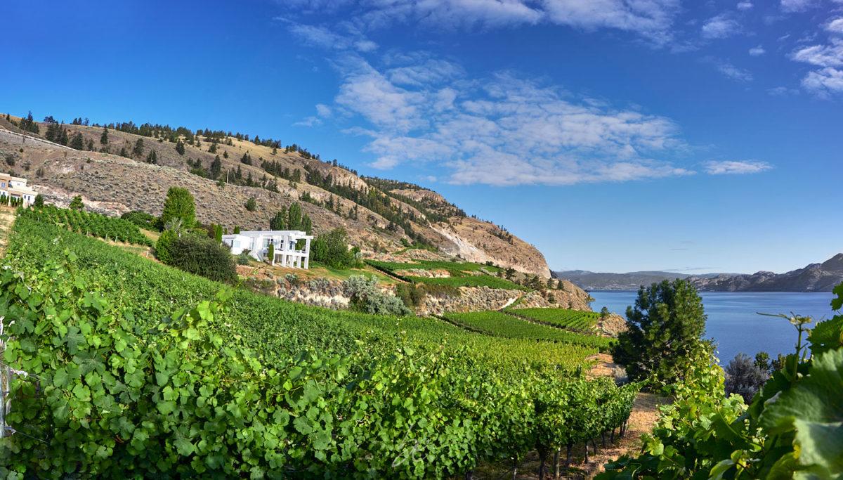 oak winery by kelowna photographer of wineries