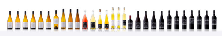 full pentage wine line up photographed by penticton photographer